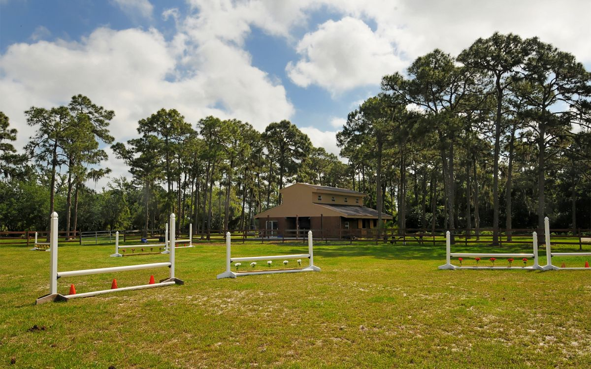 Schooling Ring with Jumps Facing Front Barn